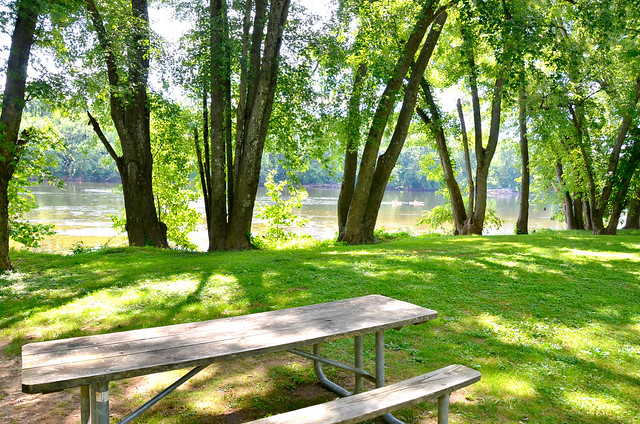The perfect spot for a picnic along the river at James River State Park