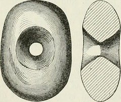"Image from page 223 of ""The ancient stone implements, weapons, and ornaments, of Great Britain"" (1872)"