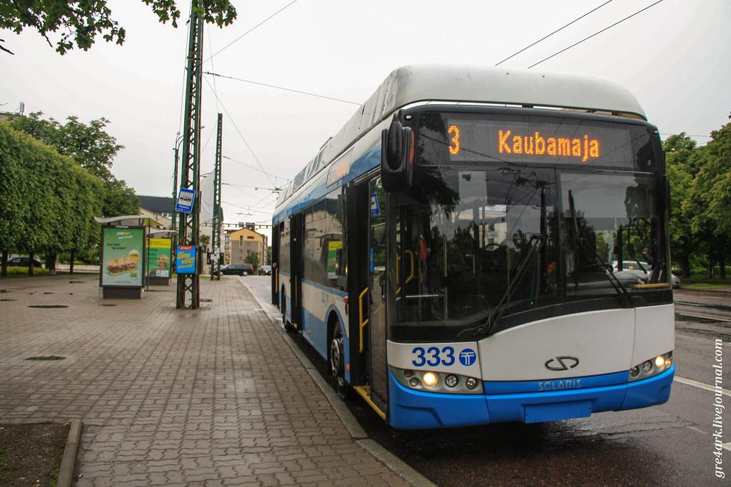 Бесплатный общественный транспорт Эстонии – почему это не сработает у нас
