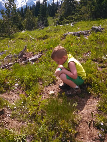 Burying his Mama's Ashes on Mt. Rainier