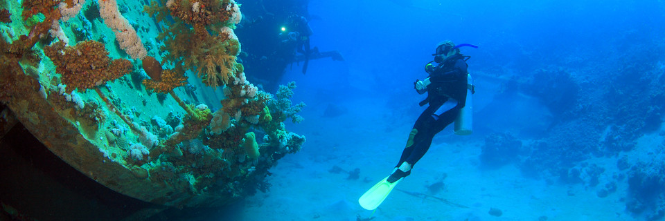 Palawan-Diving