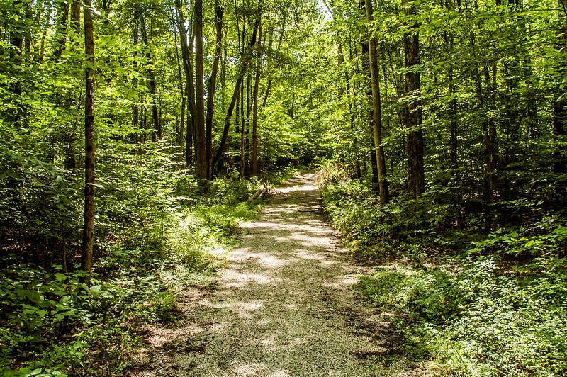 Owen-Putnam State Forest