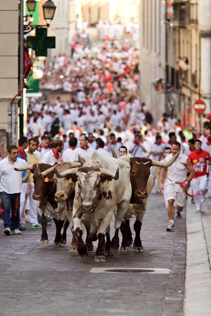 Run-Bulls-Pamplona