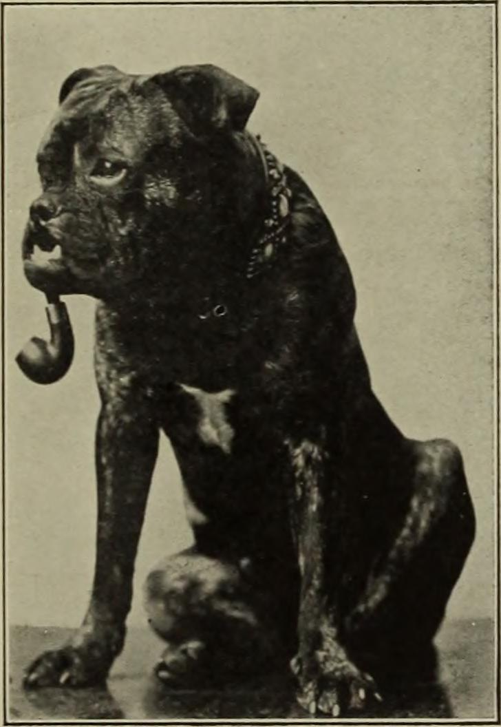 "Image from page 514 of ""Mirror, 1908"" (1908)"