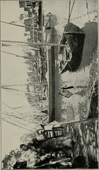 """Image from page 270 of """"A trip to the Orient; the story of a Mediterranean cruise"""" (1907)"""