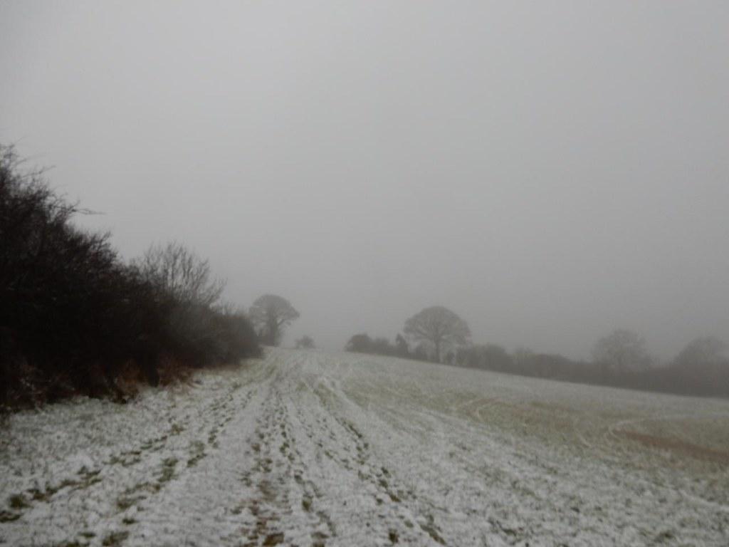 The view to Harlington Harlington Circular