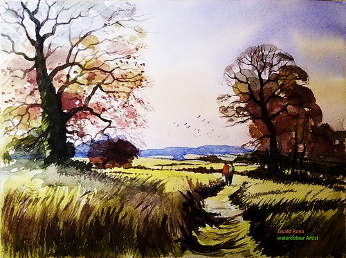 watercolour watercolor autumn spring summer woods woodland england devon landscape oil painting english oaks fields colours fall sky trees hedges hedgerows meadow farms farmland countryside cow parsley bulrushes poppies brambles