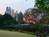 Sunset from Atlanta Botanical Gardens by beachkat1