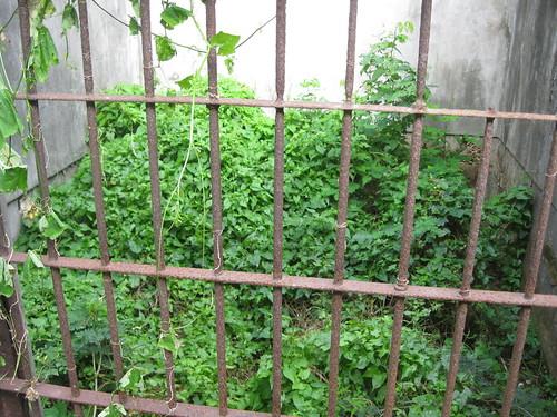 ariana islands japanese jail kummerle
