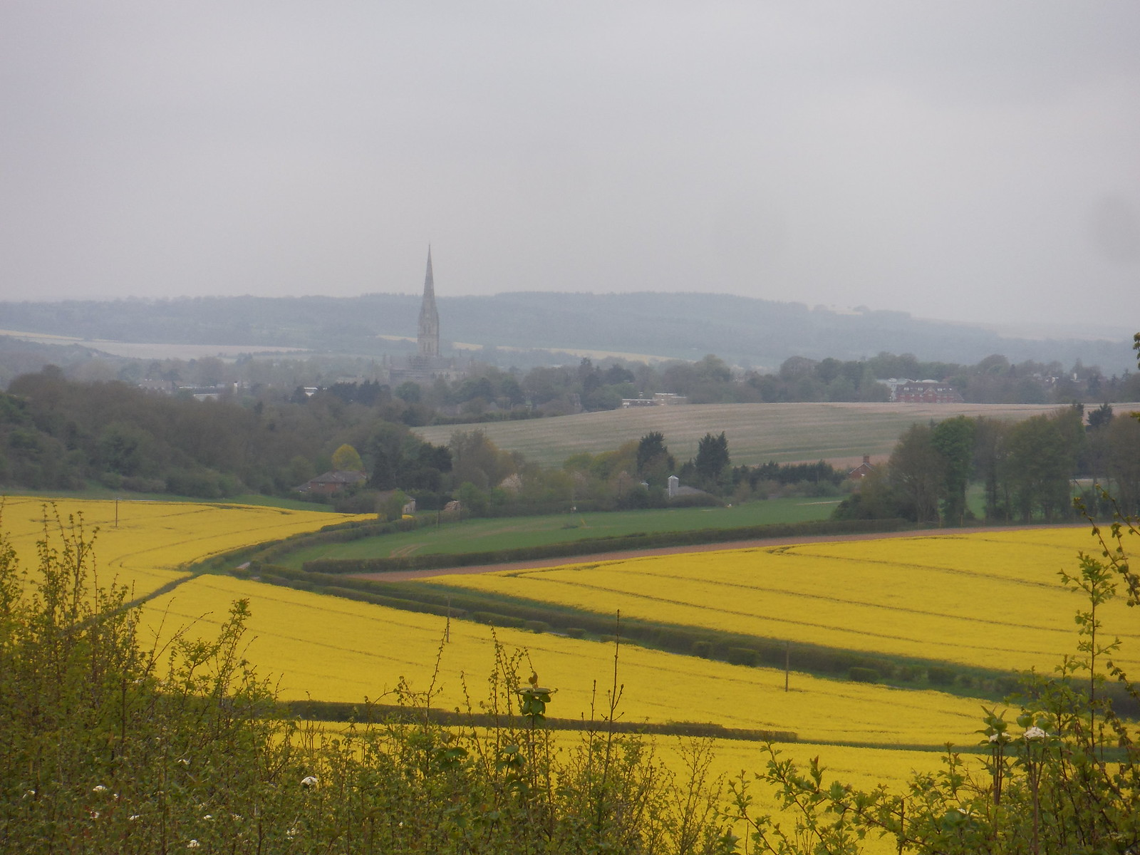 Salisbury from Clarendon Palace SWC Walk 265 - Dean to Mottisfont and Dunbridge (Alternative Start from Salisbury)