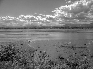 Nanaimo River Estuary: Digital HDR (from single jpg) - Kodak Easyshare Z980