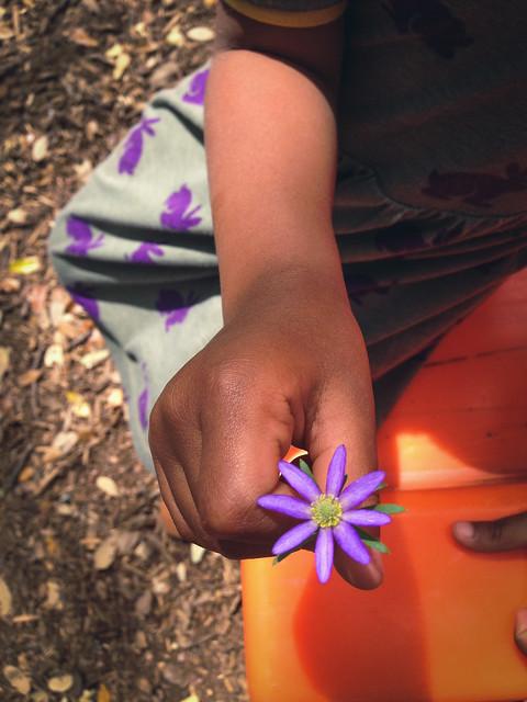 tia the flower finder