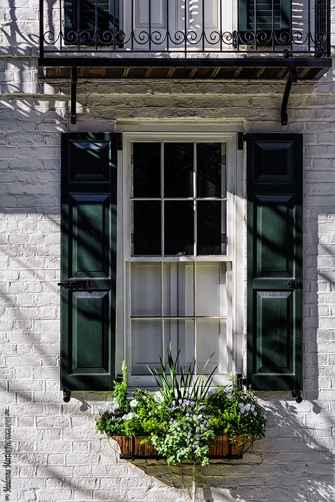 Cottage days and journeys photo of the week charleston for Charleston green paint