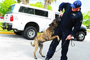 Petty Officer 1st Class Jeffrey Fallon, a Coast Guard K-9 handler, works with his dog during a K-9 demonstration at a luncheon in Kings Bay, Ga., Friday, April 25, 2014 to recognize and celebrate Camden County's official designation as the nation's first Coast Guard Community. Coast Guardsmen from Maritime Force Protection Unit Kings Bay and Maritime Safety and Security Team Kings Bay, the two Coast Guard units in Camden County, provided demonstrations for luncheon attendees. (U.S. Coast Guard photo by Petty Officer 1st Class Lauren Jorgensen)