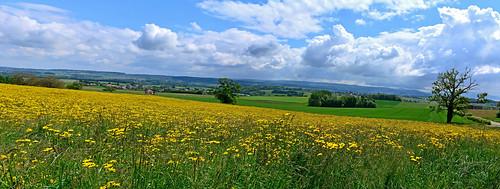 panorama saint routes campagne paysages calme vaud vaudoise saphorin