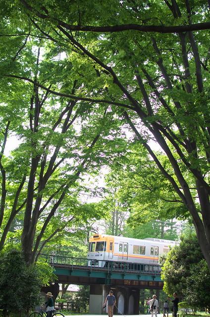 Tokyo Train Story 京王井の頭線 2014年5月4日