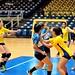 Handball Feminino
