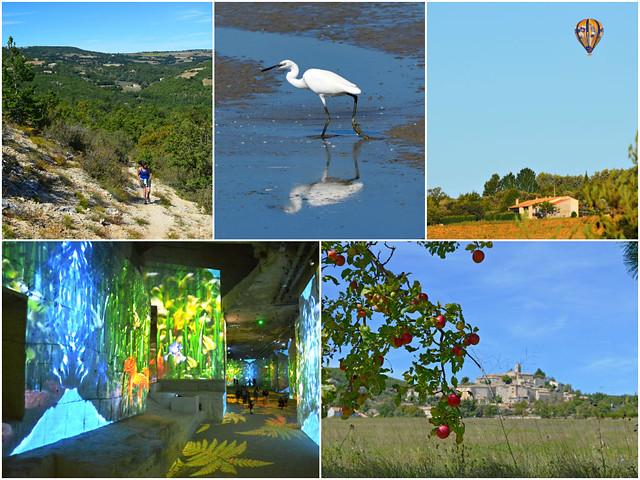 Provence gastrohike walking