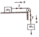 CBSE Class 11 Physics Notes Laws of Motion