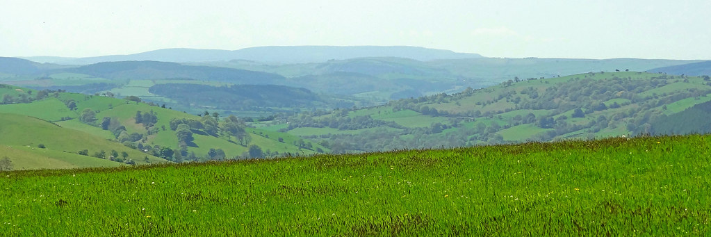 Radnor Forest from Cothercott Hill