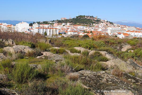 8 - Castelo Branco Portugal - Каштелу Бранку Португалия