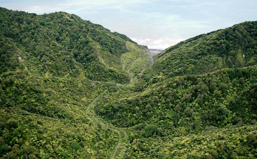 Waipingau stream Parininihi