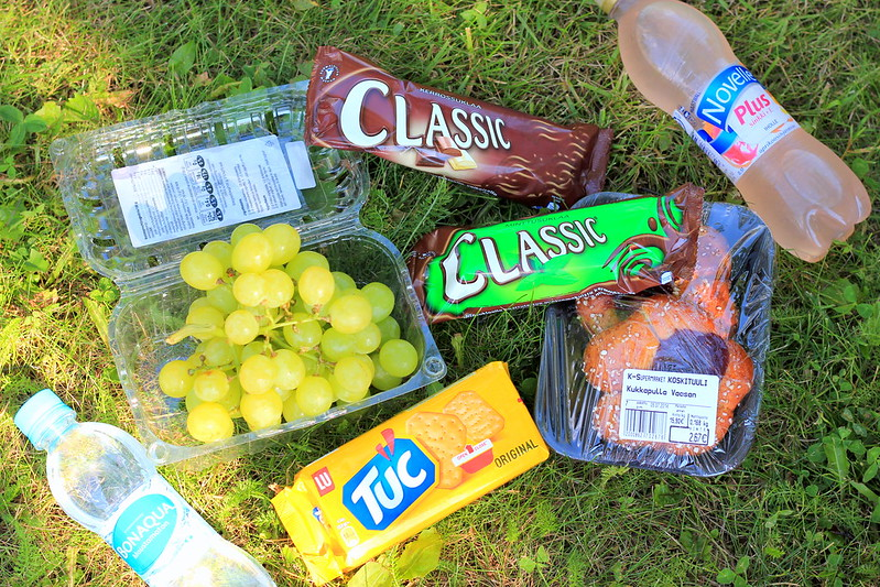 Picnic with noora 2014 019