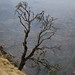 A Lone Tree on the Edge of the Simien Mountains, Ethiopia