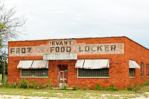 texas hamiltoncounty evant