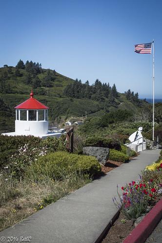 202-365 Summer in Humboldt County-1