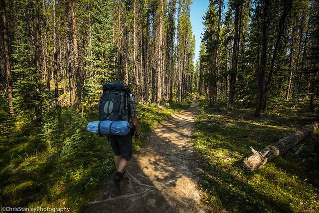 Skyline Trail Flickr-004