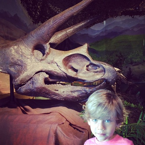 Finn and a triceratops skull