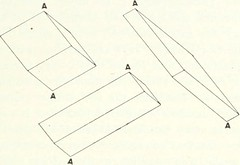"Image from page 222 of ""Light, a textbook for students who have had one year of physics"" (1921)"