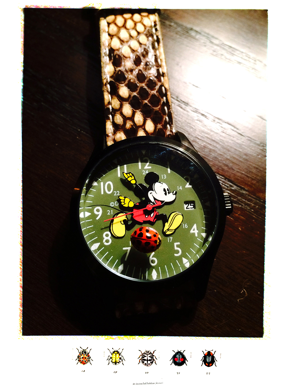 lady bug on mickey watch
