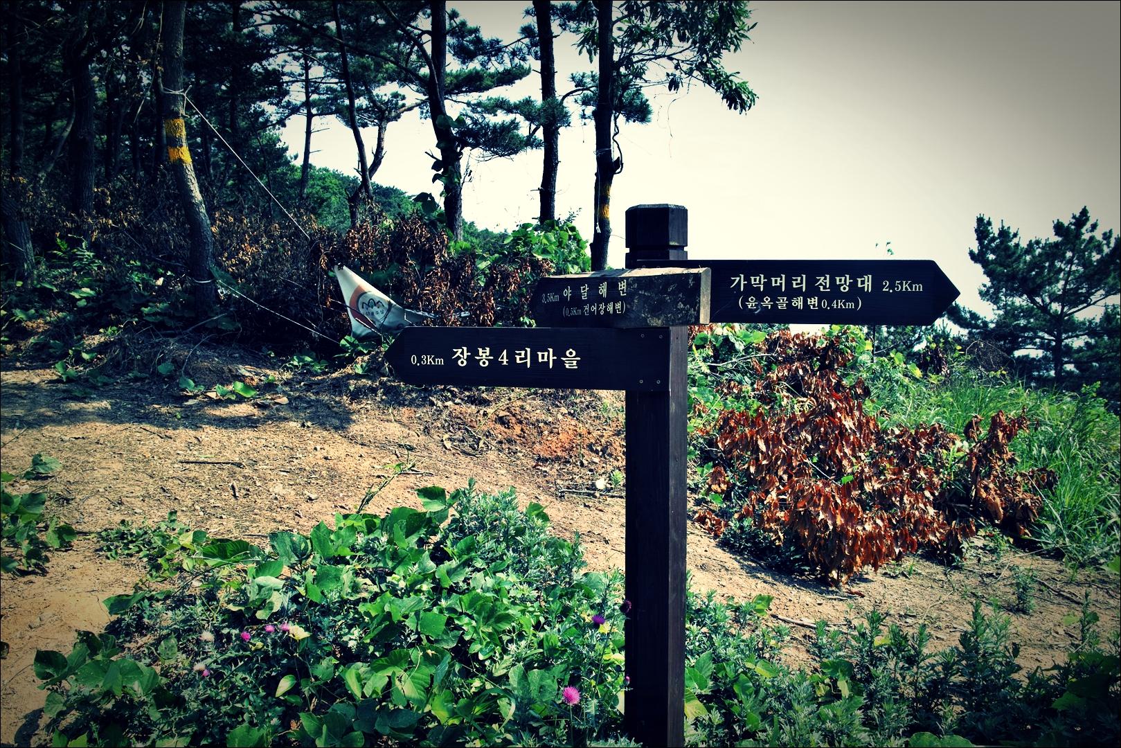 이정표-'장봉도 백패킹 Jangbongdo Backpacking'