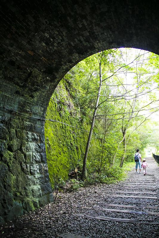 武庫川渓谷廃線ハイキング(生瀬ー武田尾)550