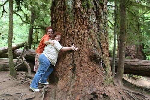 Tree huggng sisters