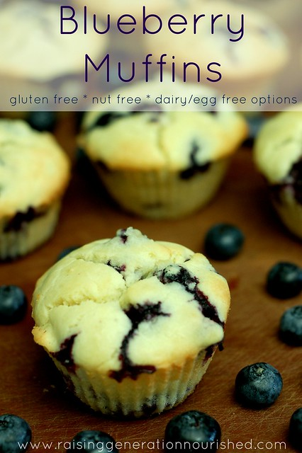 Blueberry Muffins :: Gluten Free, Nut Free, Dairy/Egg Free Options