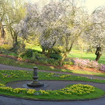 Sundial and Spring Colours at Miller Park Preston