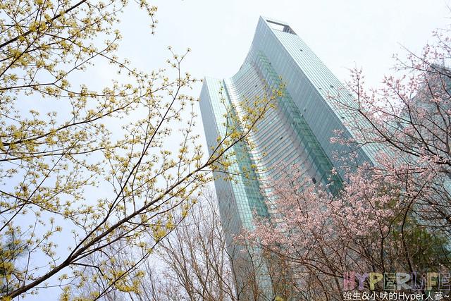 首爾林seoul forest (9)