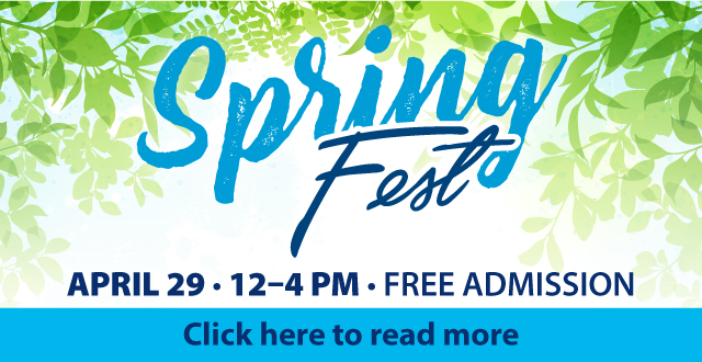 Wilmington University's 2017 Spring Fest will take place on The Green at the New Castle campus, 320 N. DuPont Parkway, on Saturday, April 29 from 12:00 p.m. to 4:00 p.m.