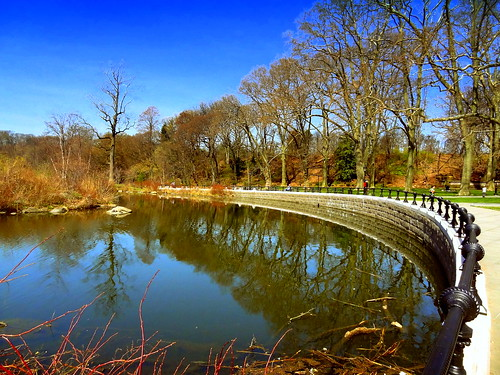 newyork brooklyn dmitriyfomenko image spring sky clouds reflection trees prospectpark