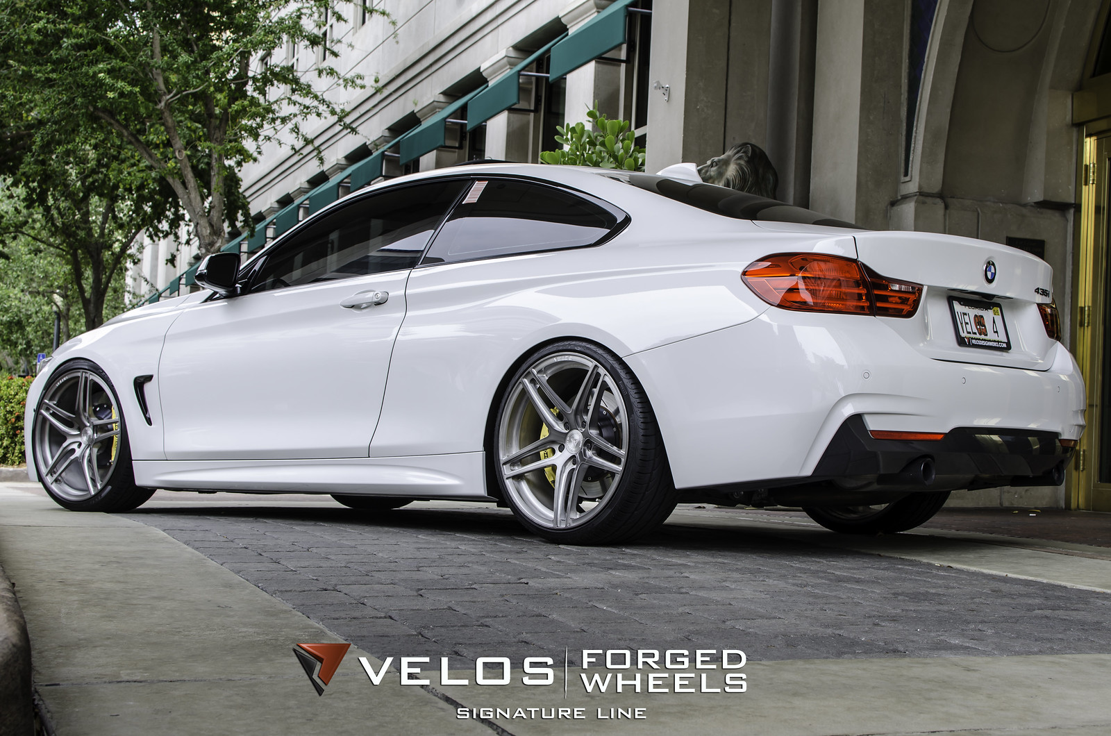bmw series bmw 435i on velos designwerks s1 signature series forged wheels. Black Bedroom Furniture Sets. Home Design Ideas