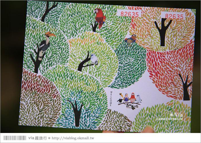 【新竹景點推薦】森林鳥花園~親子旅遊的好去處!在森林裡鳥兒與孩子們的樂園7