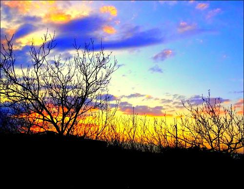sunset newyork brooklyn spring image dmitriyfomenko spring52014