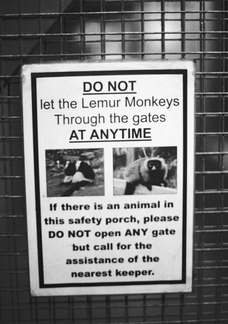Health and Safety at the Zoo Ilford PanF+ HC110 1:60