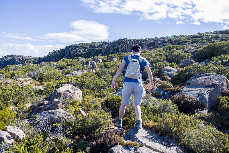 Hike Mount Wellington
