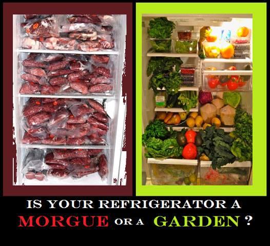 Morgue or Garden