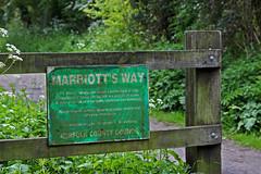 Marriotts Way May 2014