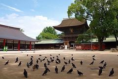 shrine179